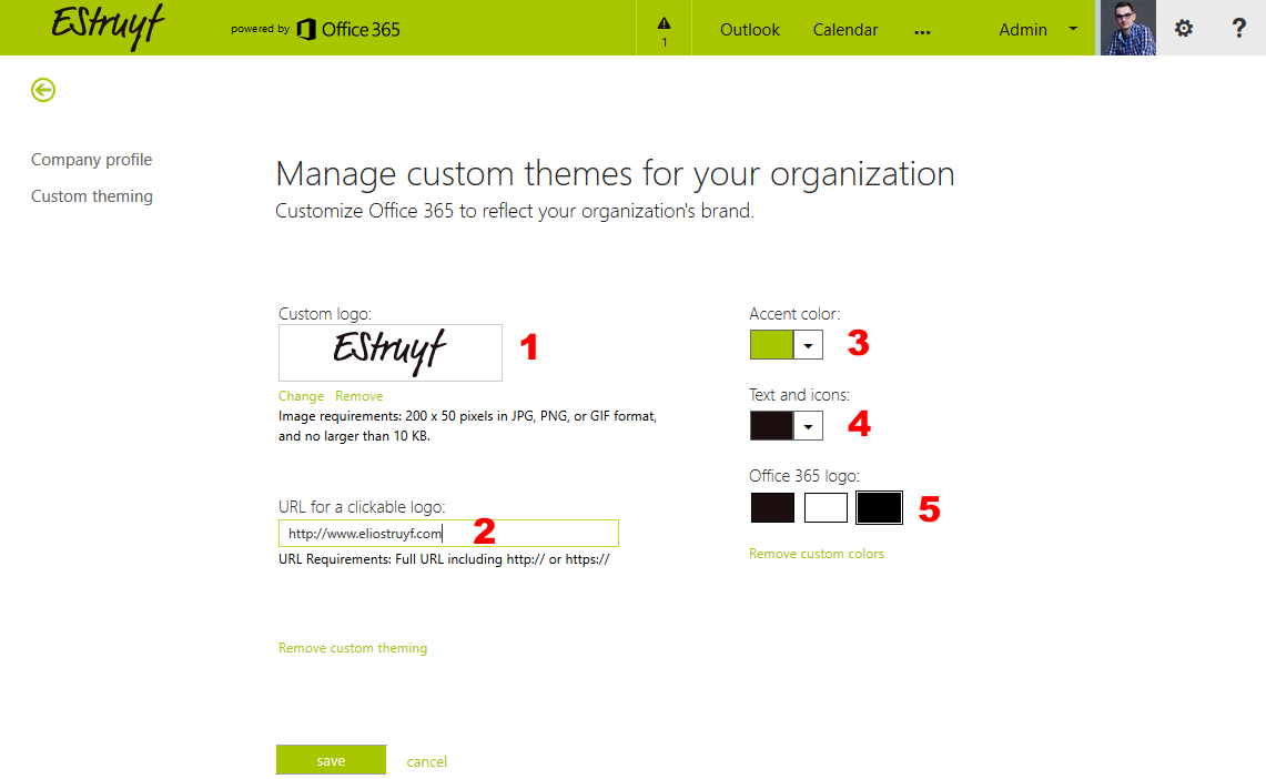 Custom Office 365 theme