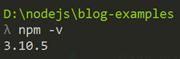 npm installed version