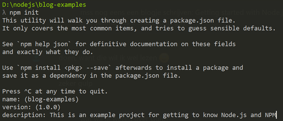 npm init questions