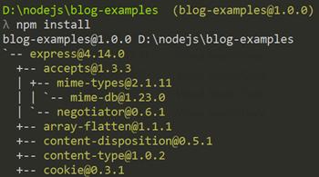 Running npm install